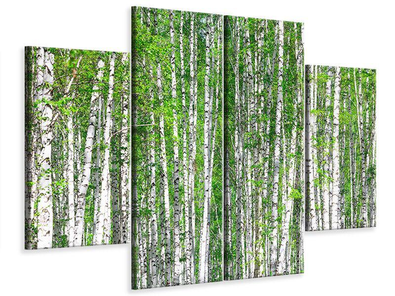 Leinwandbild 4-teilig Der Birkenwald