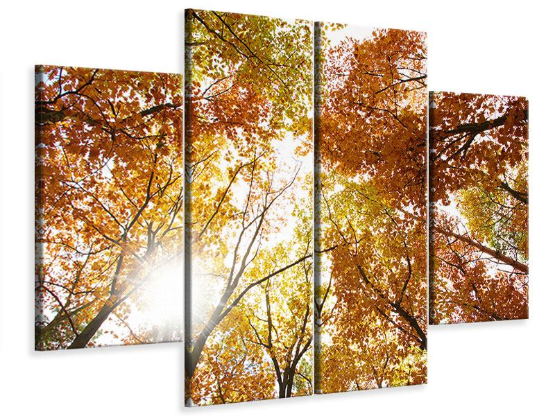 Leinwandbild 4-teilig Herbstbäume