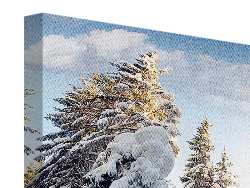 Leinwandbild 4-teilig Tannen im Schnee
