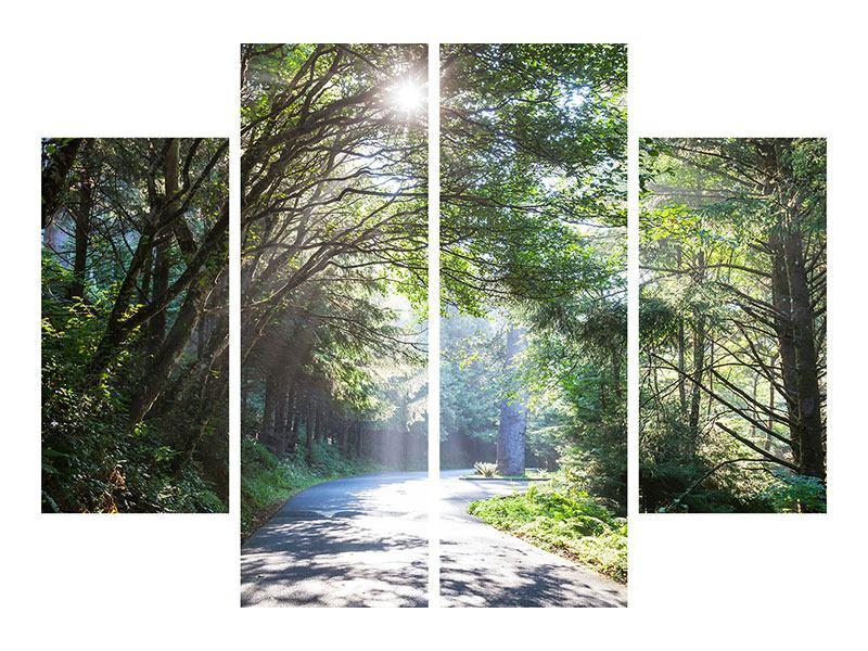 Leinwandbild 4-teilig Sonniger Waldweg