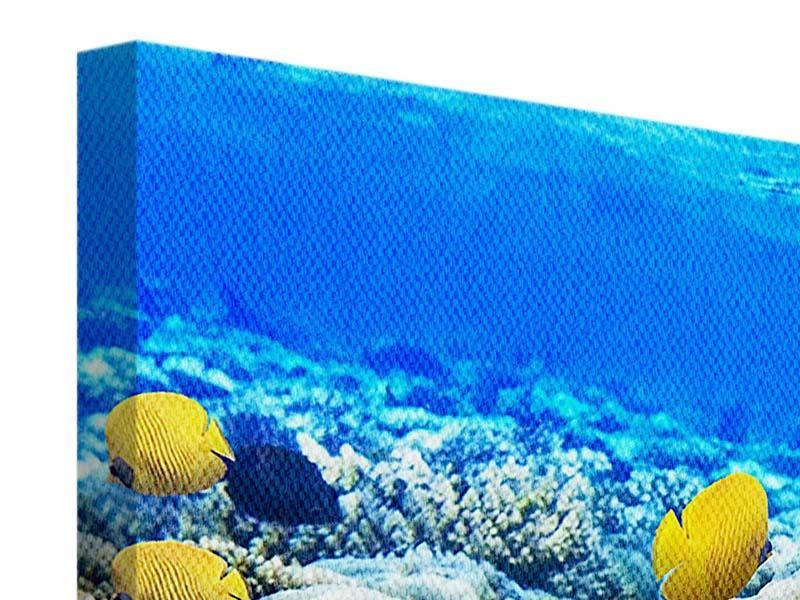 Leinwandbild 4-teilig Fischaquarium