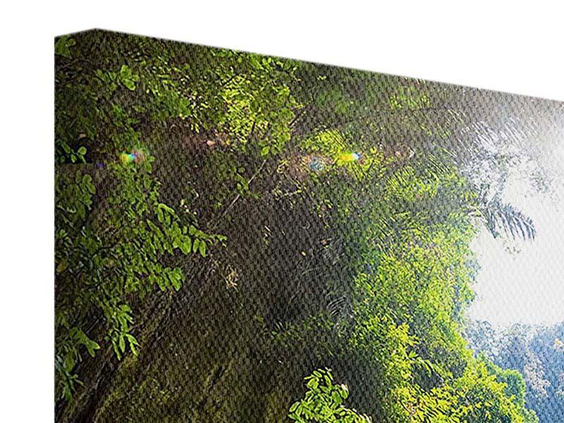 Leinwandbild 4-teilig Lichtung im Dschungel