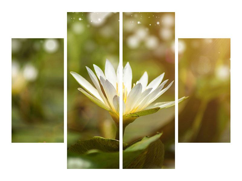 Leinwandbild 4-teilig Lilien-Lichtspiel