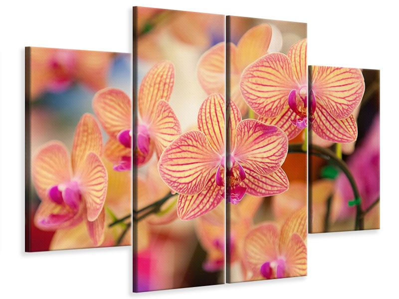 Leinwandbild 4-teilig Exotische Orchideen