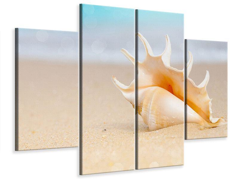 Leinwandbild 4-teilig Die Muschel am Strand