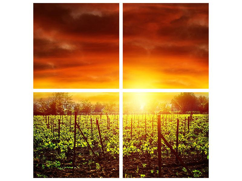 Leinwandbild 4-teilig Der Weinberg bei Sonnenuntergang