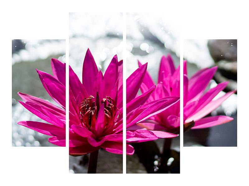 Leinwandbild 4-teilig Seerosenduo in Pink