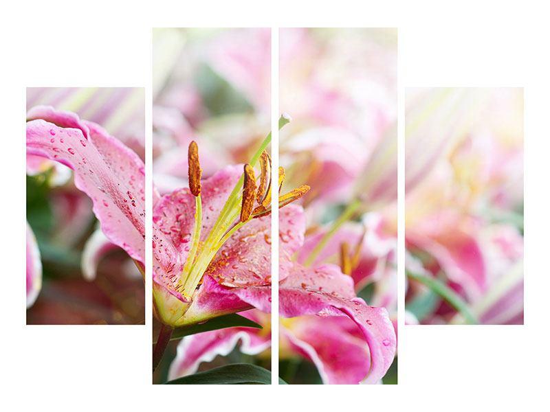 Leinwandbild 4-teilig Lilien im Tau
