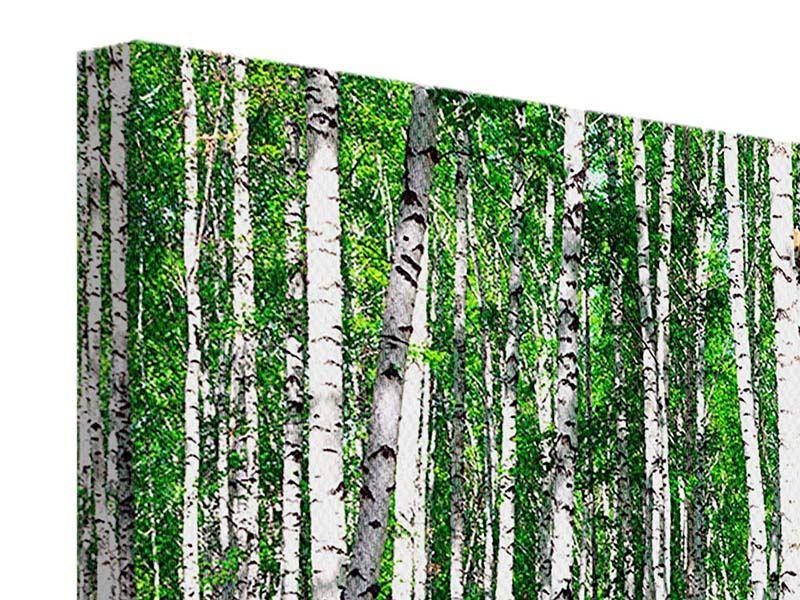 Leinwandbild 4-teilig Sommerlicher Birkenwald