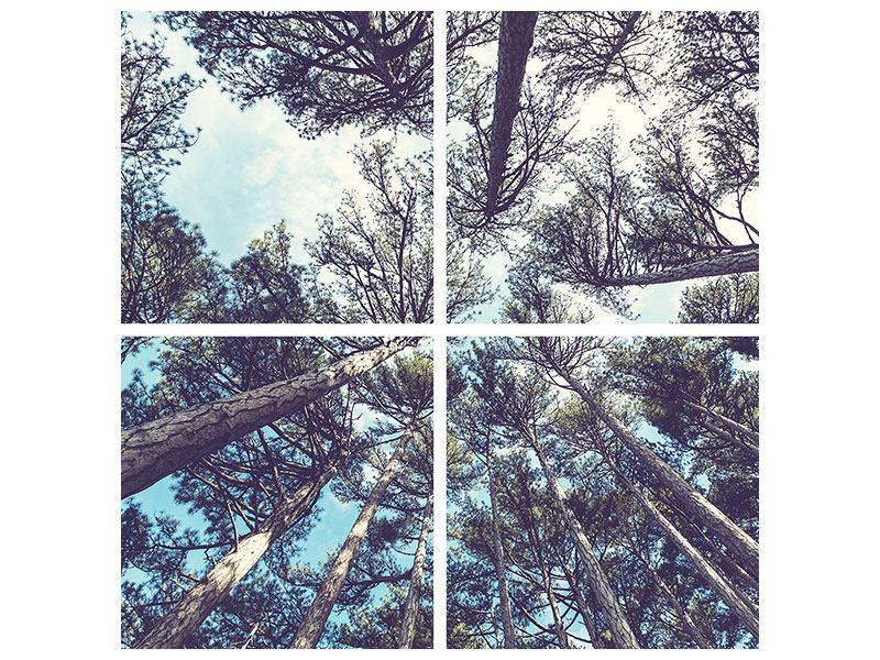 Leinwandbild 4-teilig High in the Sky