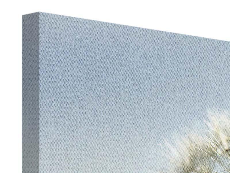 Leinwandbild 4-teilig Löwenzahn XXL