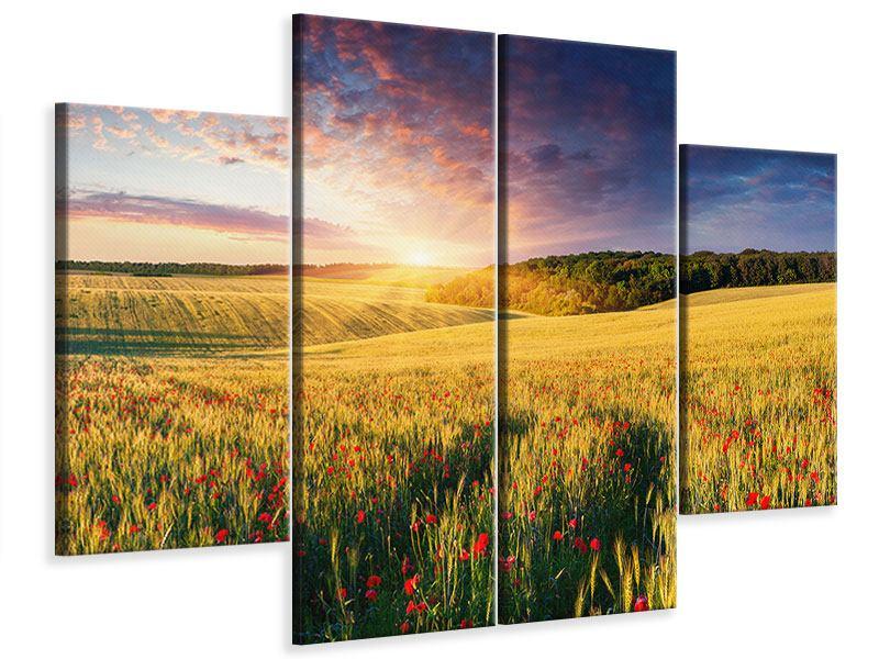 Leinwandbild 4-teilig Ein Blumenfeld bei Sonnenaufgang