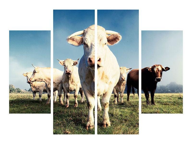 Leinwandbild 4-teilig Kühe