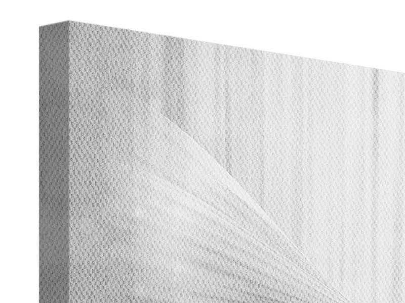 Leinwandbild 4-teilig Engelsflügel