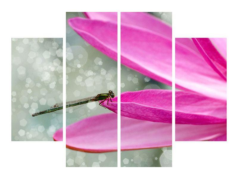 Leinwandbild 4-teilig Libelle auf dem Seerosenblatt