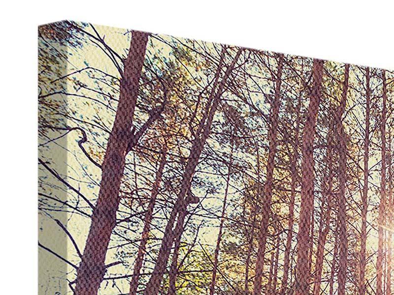 Leinwandbild 4-teilig Licht am Ende des Waldweges