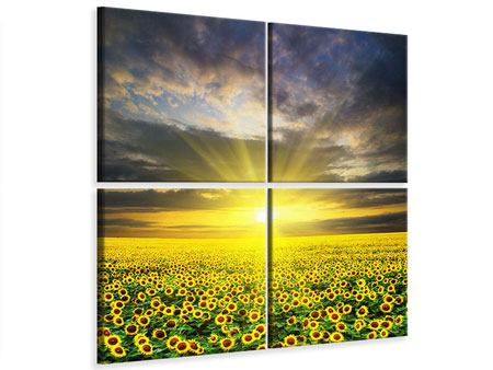 Leinwandbild 4-teilig Abenddämmerung bei den Sonnenblumen