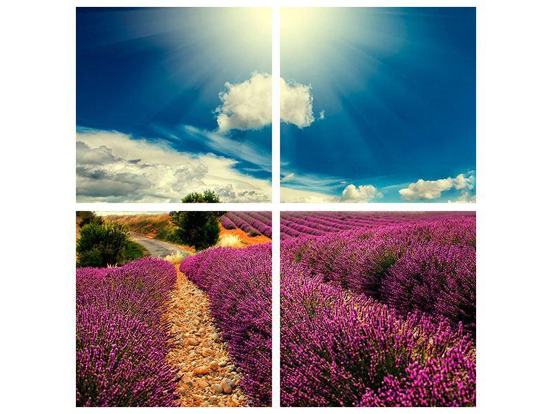 Leinwandbild 4-teilig Das Lavendeltal