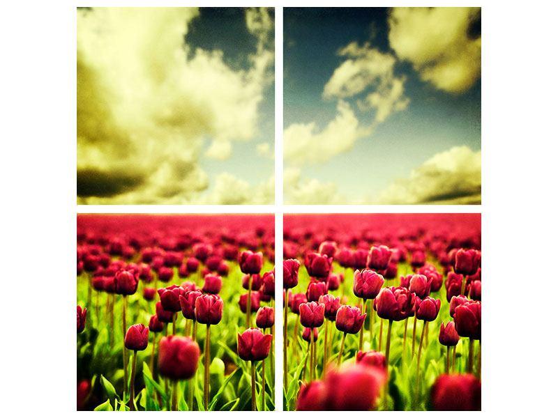 Leinwandbild 4-teilig Ein Tulpenfeld