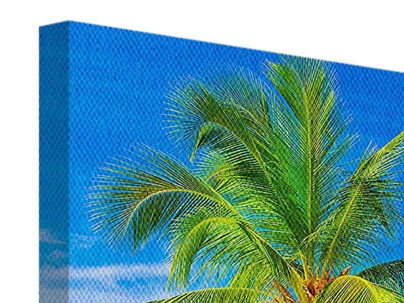 Leinwandbild Die Palme