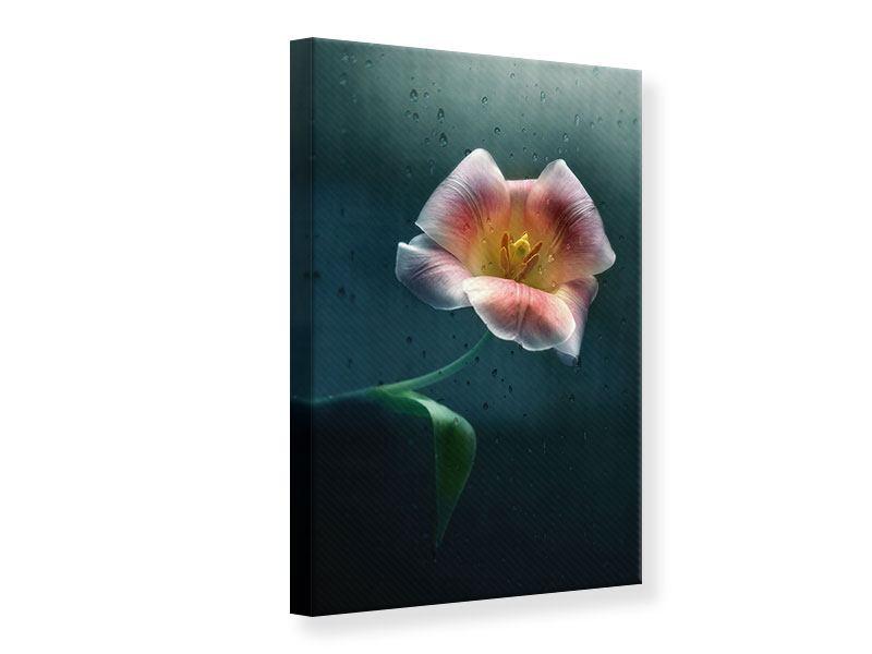 Leinwandbild Die geöffnete Tulpe