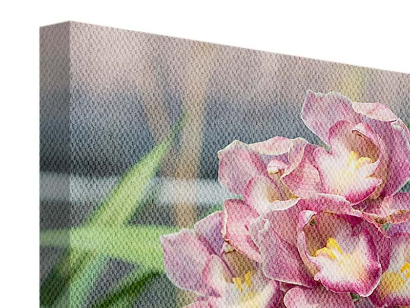 Leinwandbild Wilde Orchideen
