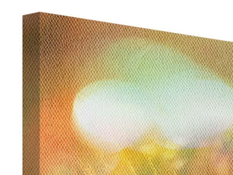 Leinwandbild Blumenwiese in der Abenddämmerung