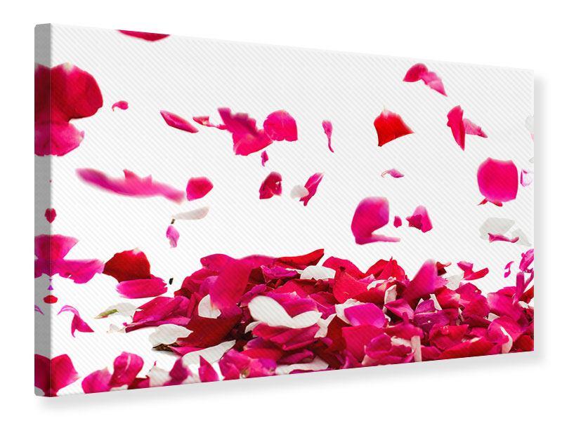 Leinwandbild Für mich soll`s rote Rosen regnen