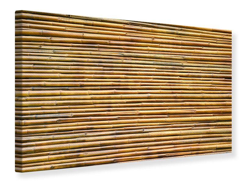 Leinwandbild Bambus