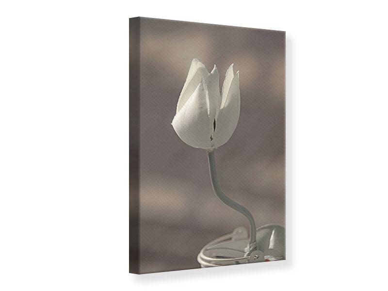 Leinwandbild Die Tulpe in Sepia