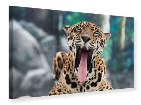 Leinwandbild Leopardenkopf