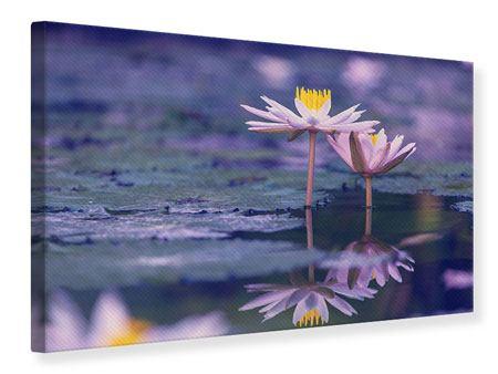 Leinwandbild Lotus Duo im Sonnenaufgang