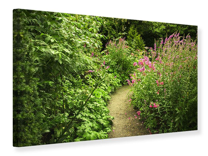 Leinwandbild Gartenweg