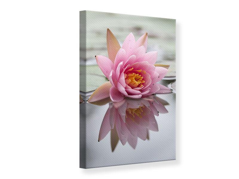 Leinwandbild Lotus