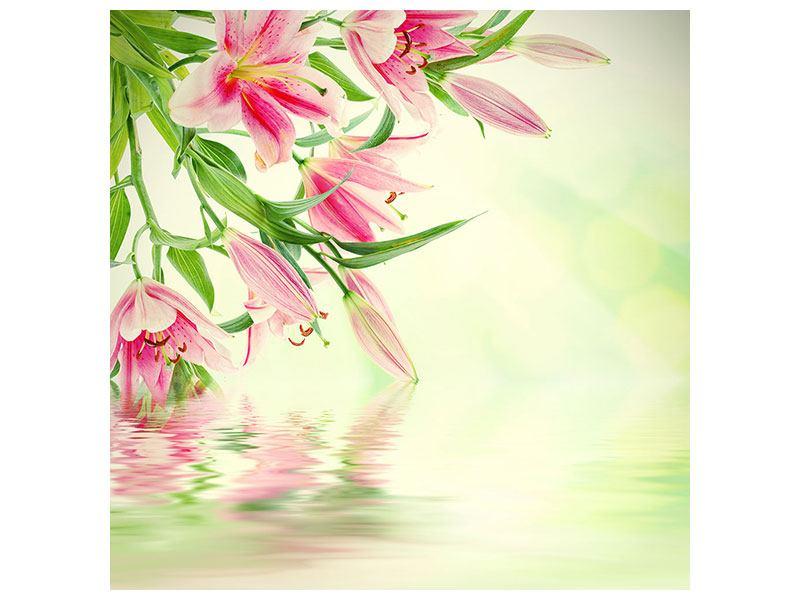 Leinwandbild Lilien am Wasser
