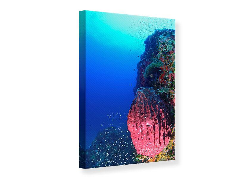 Leinwandbild Unterwasserwelt