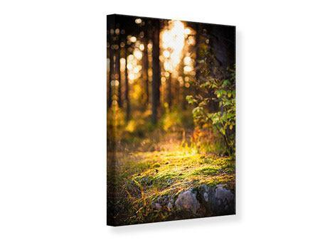 Leinwandbild Der Wald im Hintergrund