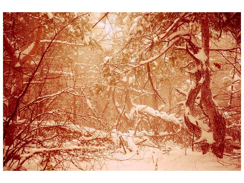 Leinwandbild Schneewald