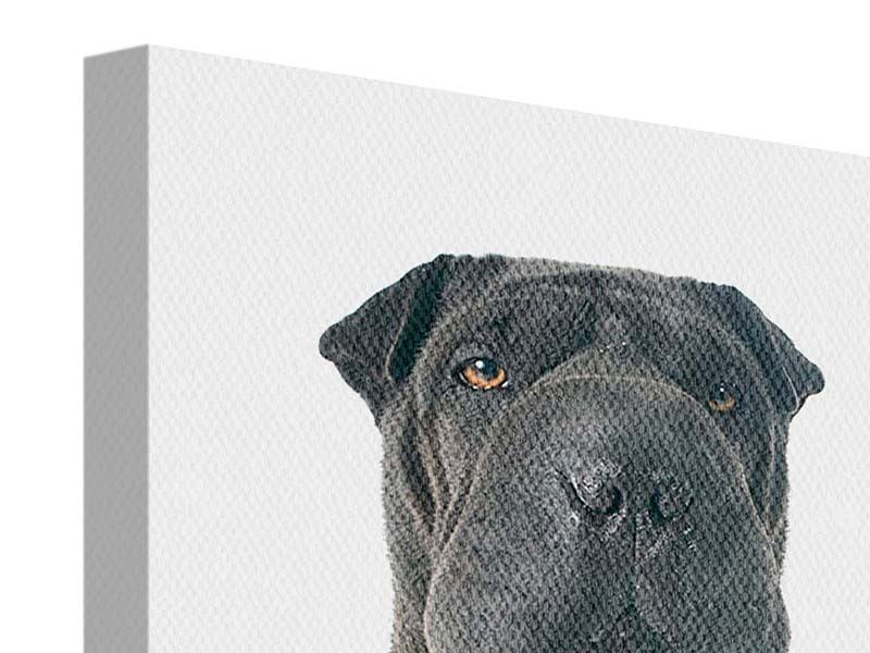 Leinwandbild Der Mastiff