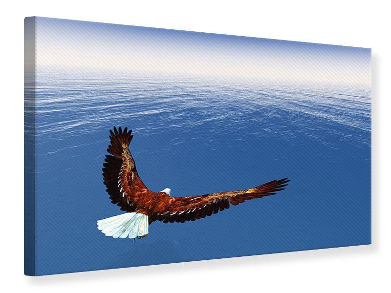 Leinwandbild Der Adler