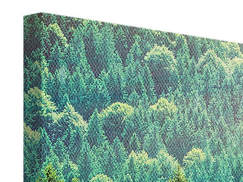 Leinwandbild Der Waldhügel