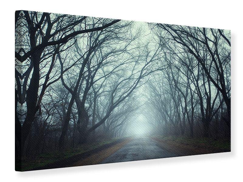Leinwandbild Nebelwald
