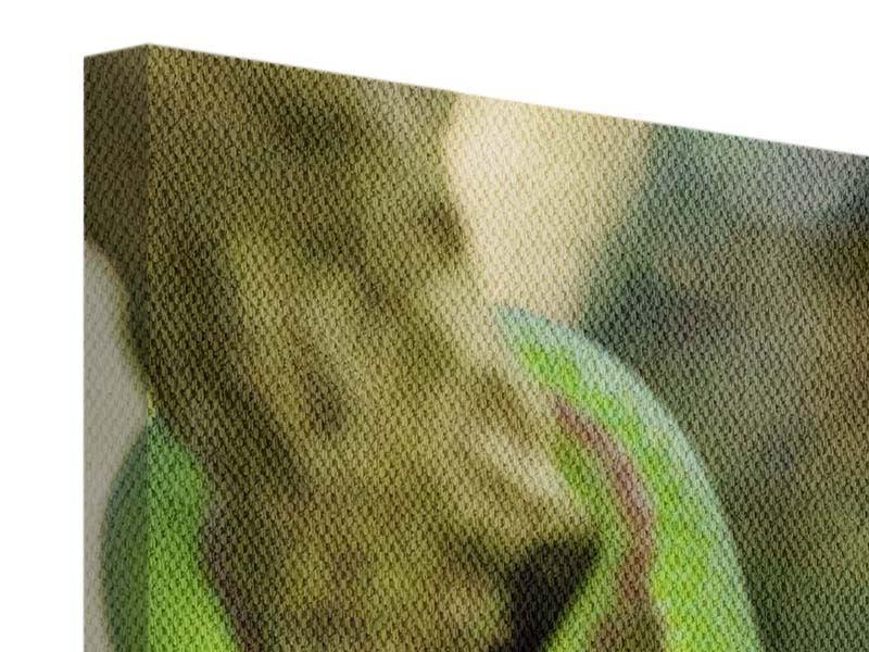 Leinwandbild Grüner Baumpython