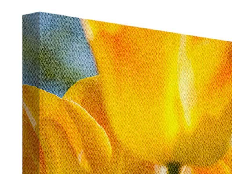 Leinwandbild Im Tulpenbeet