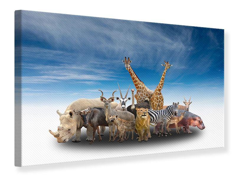 Leinwandbild Der Zoo