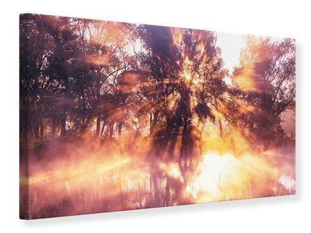 Leinwandbild Die Waldspiegelung