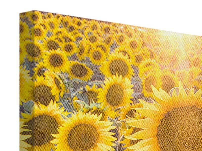 Leinwandbild Die Sonnenblumenperspektive