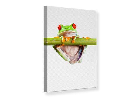 Leinwandbild Frosch-Akrobatik