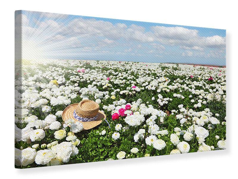 Leinwandbild Die Frühlingsblumenwiese