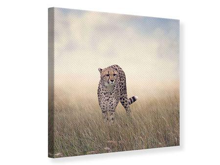 Leinwandbild Der Gepard